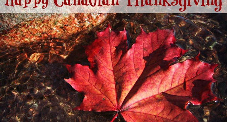 Happy Thanksgiving from Canadian Ambassador Peter McGovern