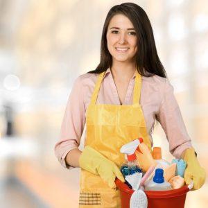 Household Employment