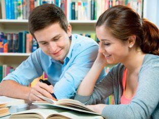 Seeking English teacher for 2 boys